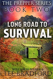 Long Road to Survival 2